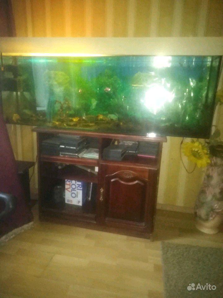 Продам аквариум, на 350л.Пишите в ватсп смс, на ав купить на Зозу.ру - фотография № 1