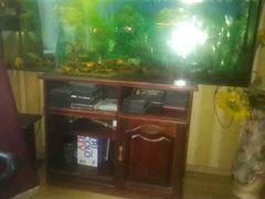 Продам аквариум, на 350л.Пишите в ватсп смс, на ав