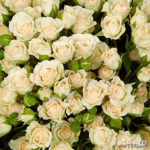Купить цветы кемеровской области
