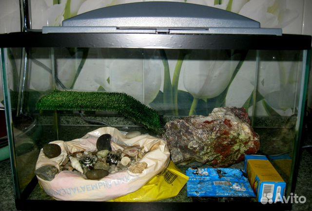 Уф лампа для красноухой черепахи цена