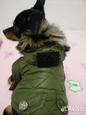 89376671516 Куртка зимняя для собаки