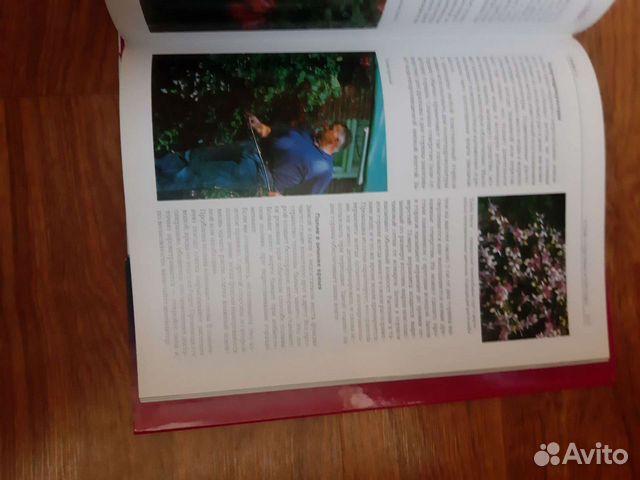 Энциклопедия цветов Фуксии  89044003557 купить 8