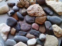 Ракушки и морские камни