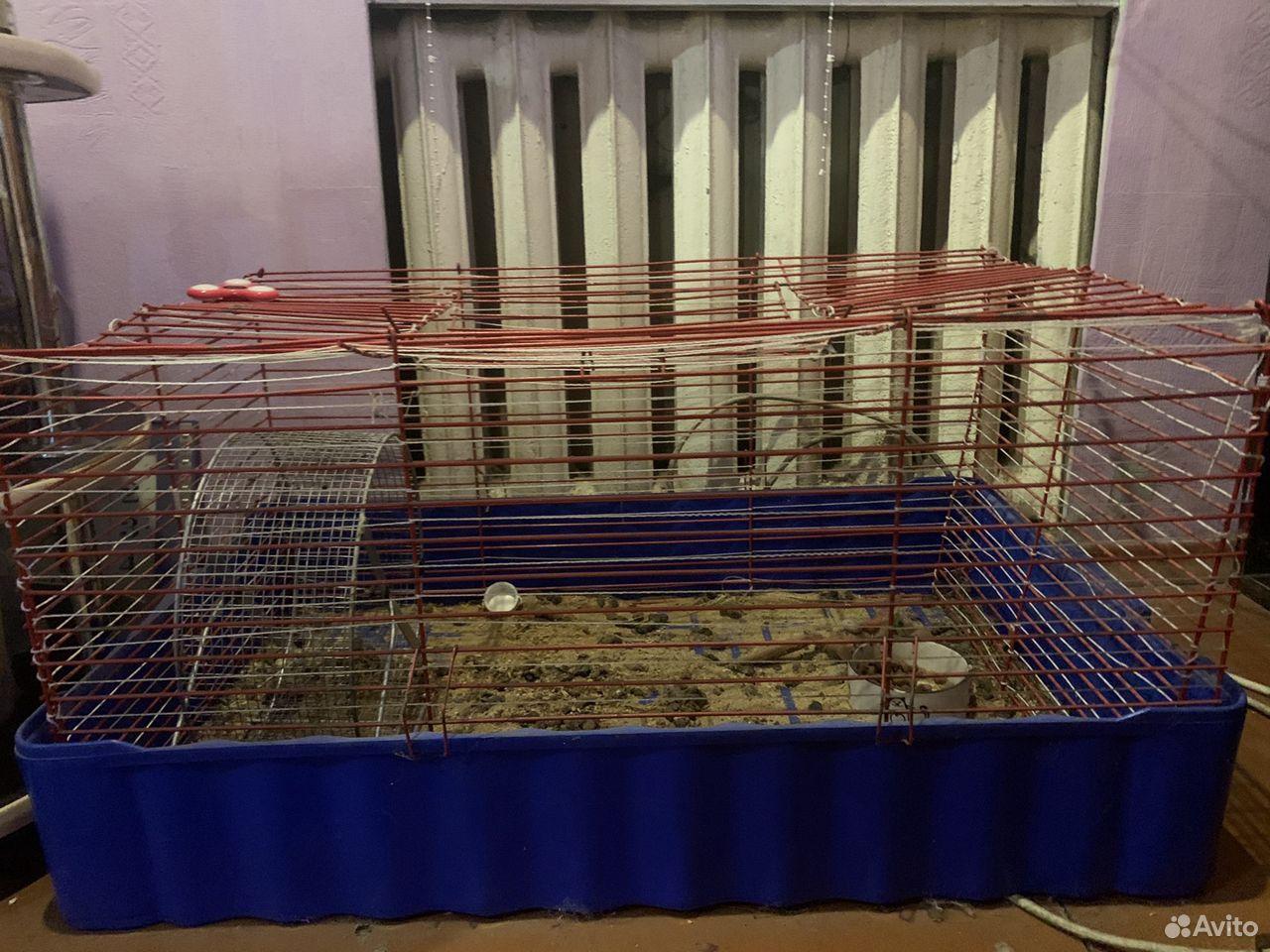 Клетка для кролика  89040753805 купить 1